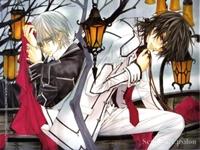Vampire Knight - 13